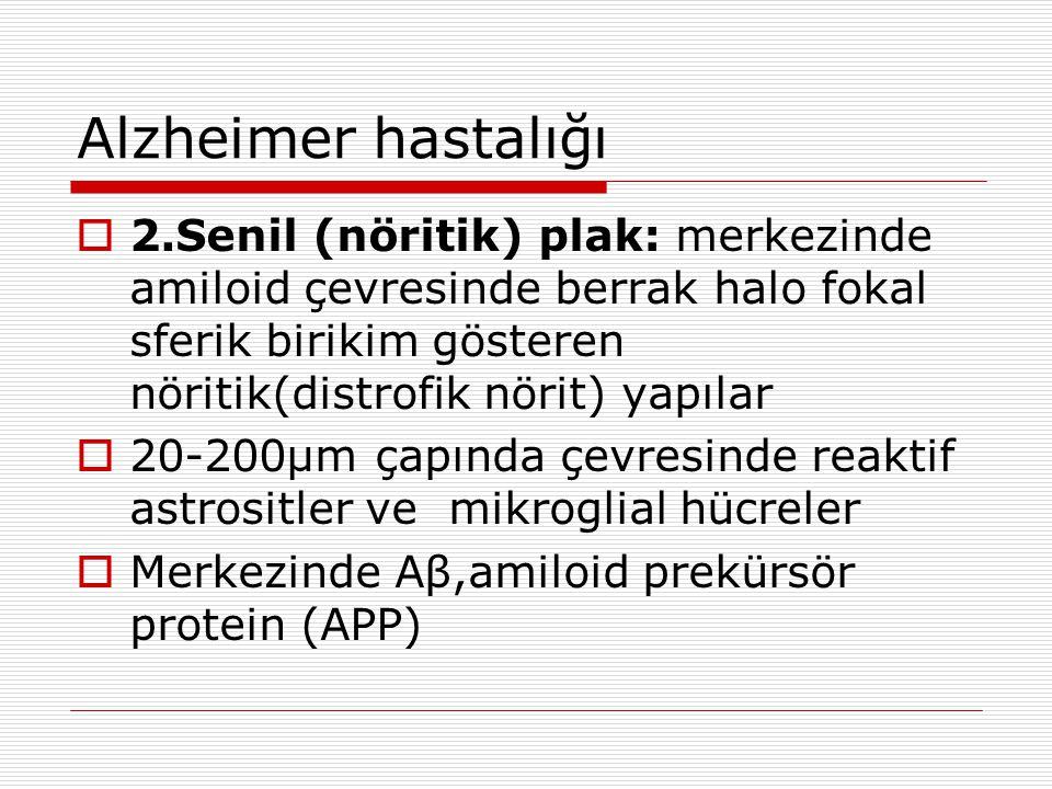 Alzheimer hastalığı 2.Senil (nöritik) plak: merkezinde amiloid çevresinde berrak halo fokal sferik birikim gösteren nöritik(distrofik nörit) yapılar.