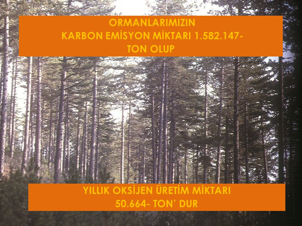KARBON EMİSYON MİKTARI 1.582.147- YILLIK OKSİJEN ÜRETİM MİKTARI