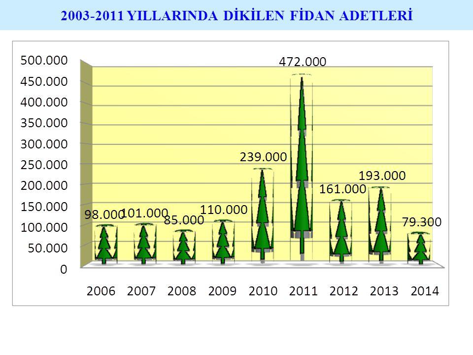 2003-2011 YILLARINDA DİKİLEN FİDAN ADETLERİ