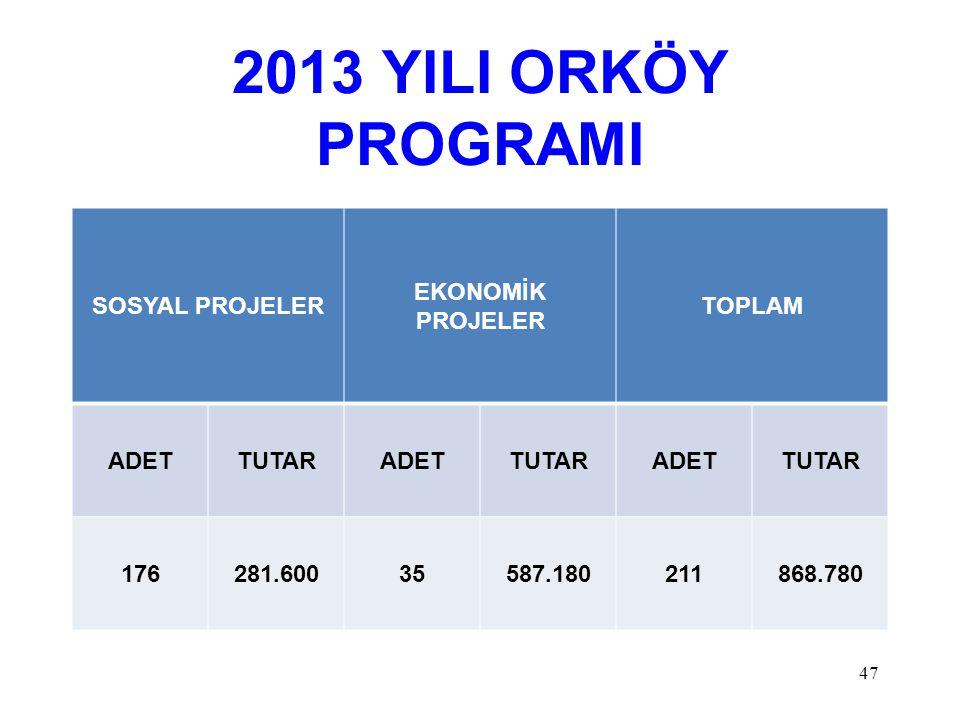 2013 YILI ORKÖY PROGRAMI SOSYAL PROJELER EKONOMİK PROJELER TOPLAM ADET