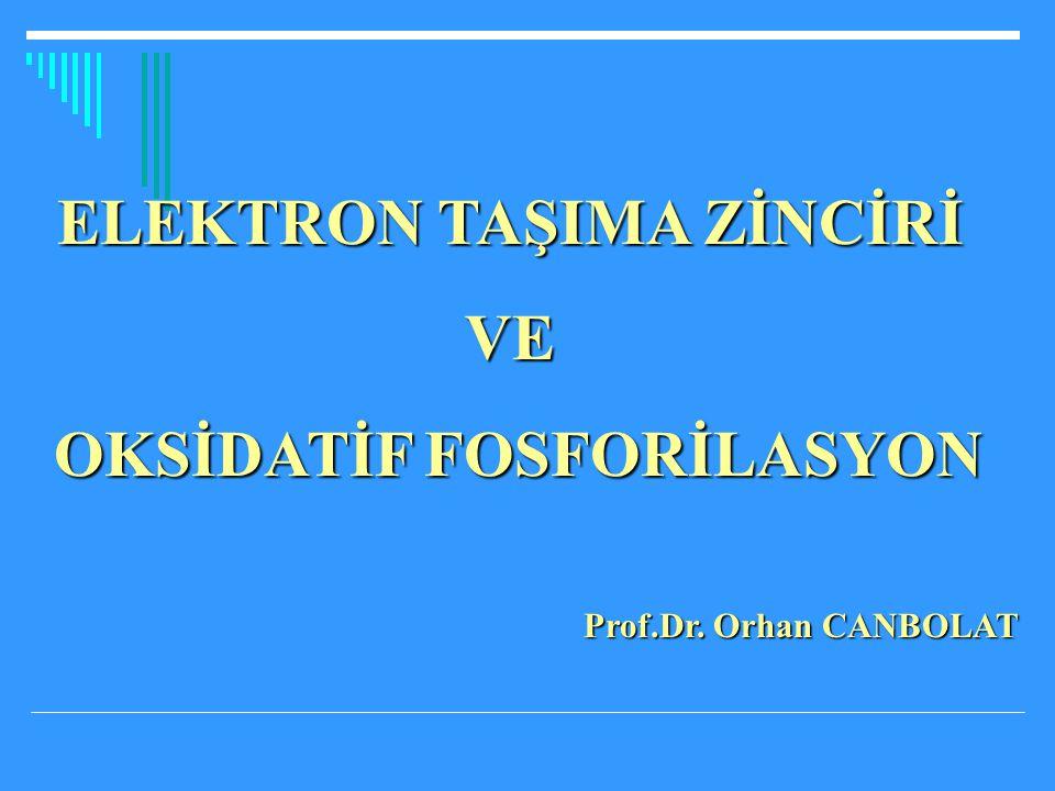 ELEKTRON TAŞIMA ZİNCİRİ OKSİDATİF FOSFORİLASYON