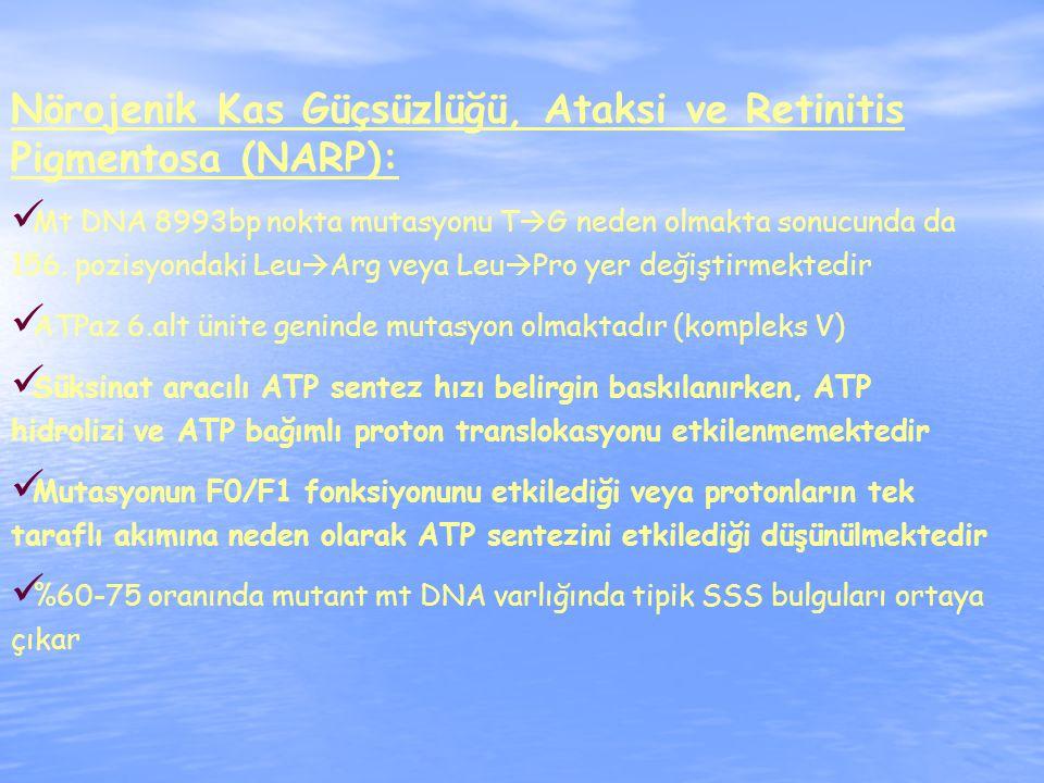 Nörojenik Kas Güçsüzlüğü, Ataksi ve Retinitis Pigmentosa (NARP):