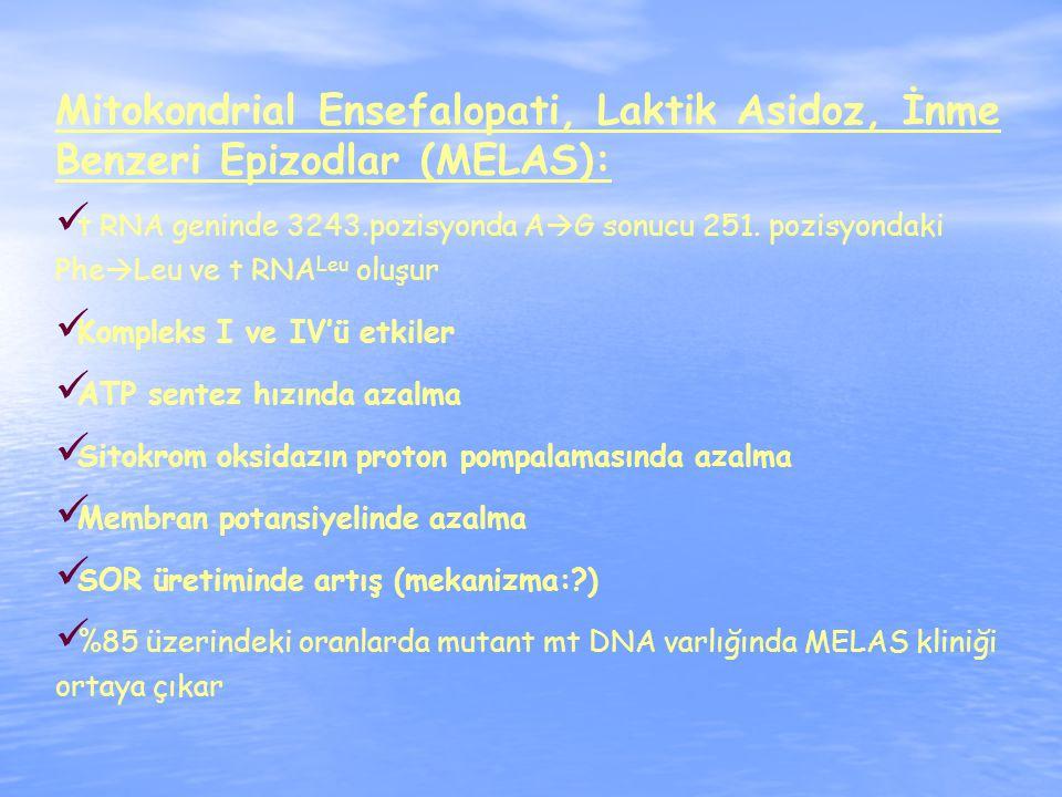 Mitokondrial Ensefalopati, Laktik Asidoz, İnme Benzeri Epizodlar (MELAS):