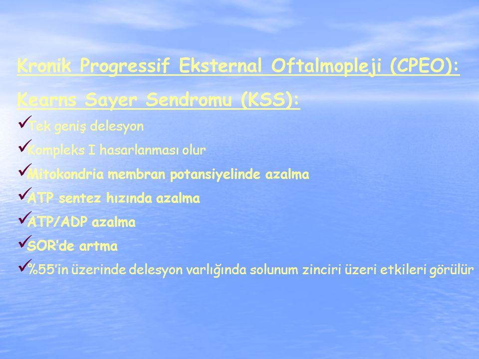 Kronik Progressif Eksternal Oftalmopleji (CPEO):