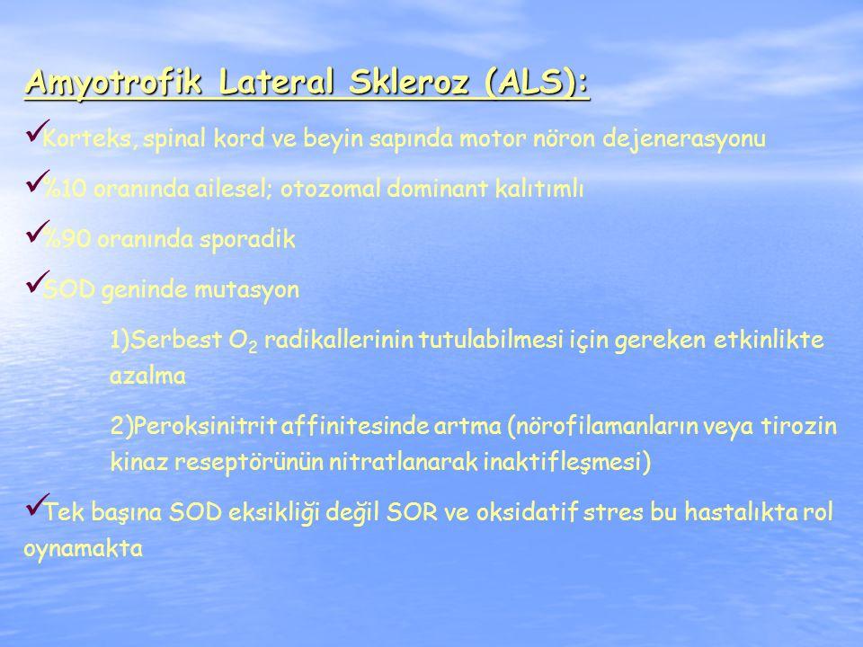 Amyotrofik Lateral Skleroz (ALS):