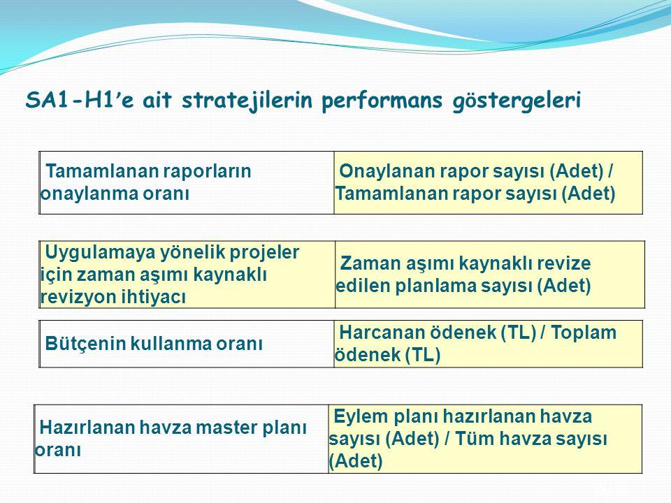 SA1-H1'e ait stratejilerin performans göstergeleri