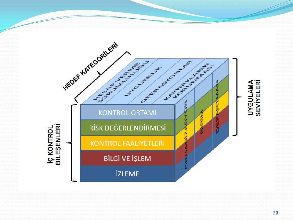 Faaliyet ve birimler, hedefler ve iç kontrolün unsurları bir küpün farklı yüzeylerini oluşturur ve ayrılmaz bir bütündür.