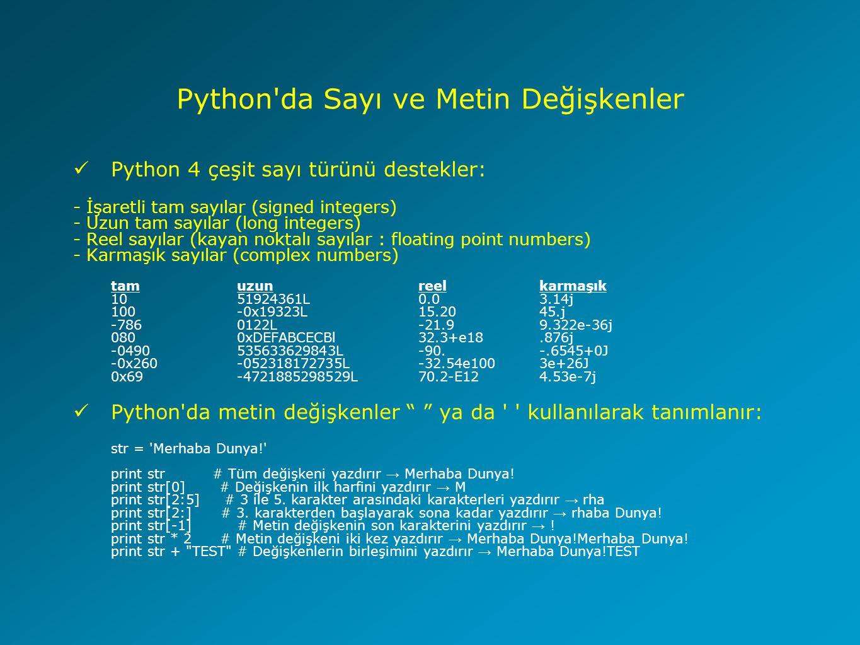 Python da Sayı ve Metin Değişkenler