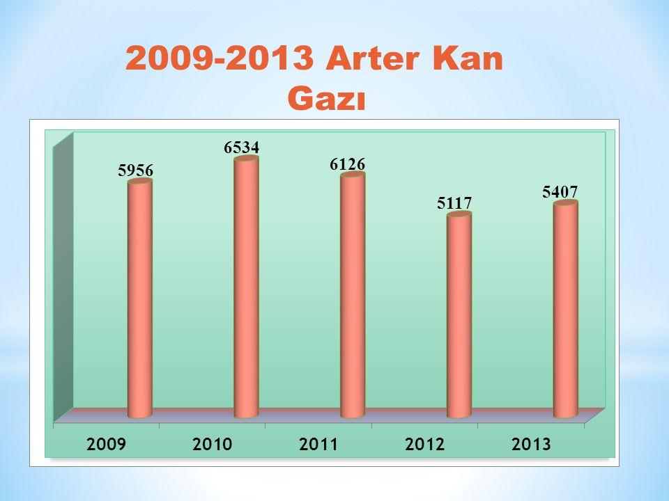 2009-2013 Arter Kan Gazı