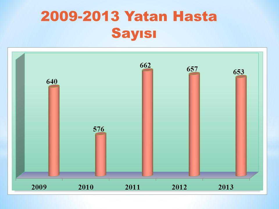 2009-2013 Yatan Hasta Sayısı