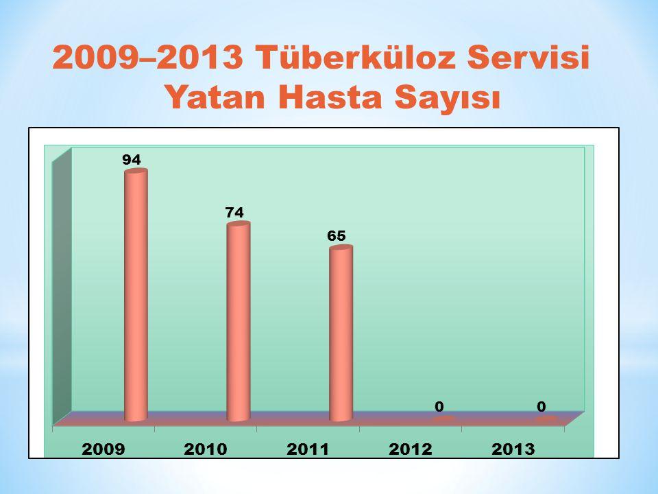 2009–2013 Tüberküloz Servisi Yatan Hasta Sayısı