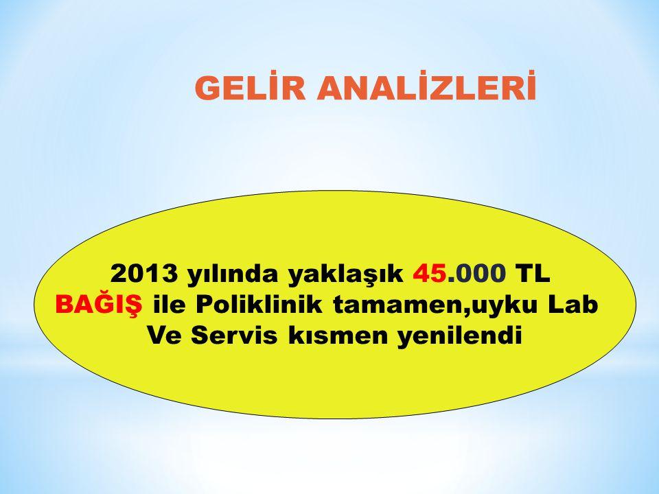 GELİR ANALİZLERİ 2013 yılında yaklaşık 45.000 TL