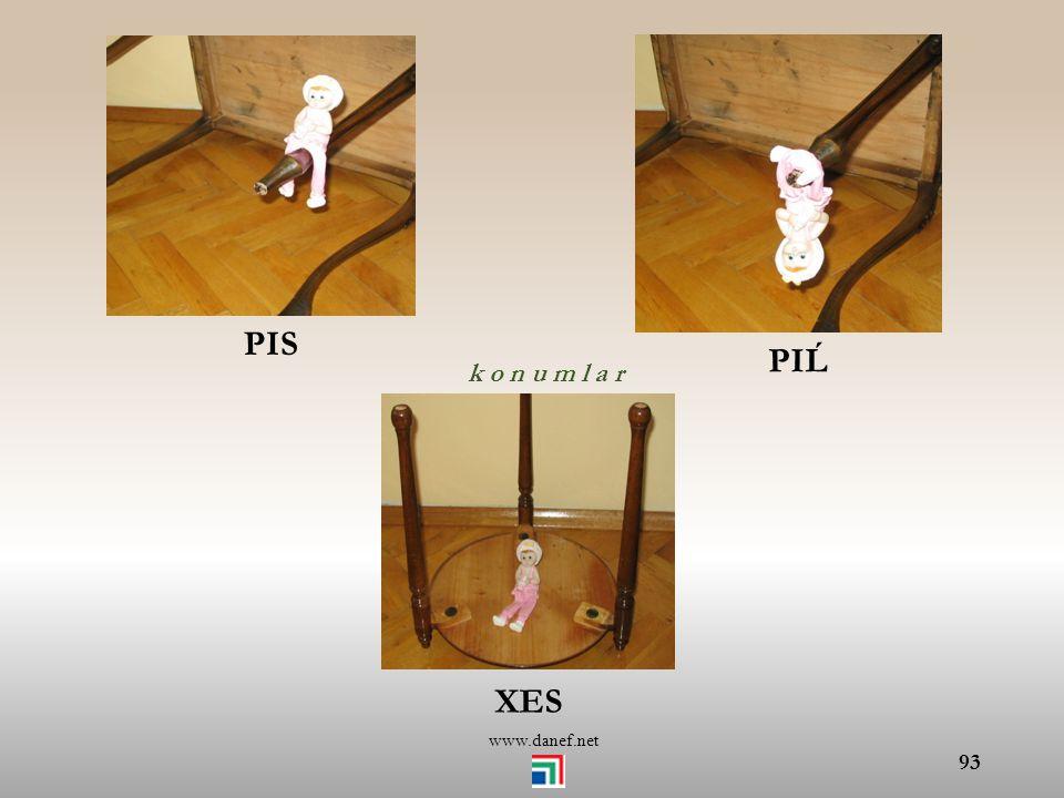PIS PIĹ k o n u m l a r XES www.danef.net
