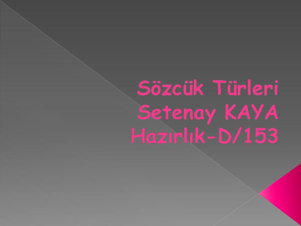 Sözcük Türleri Setenay KAYA Hazırlık-D/153