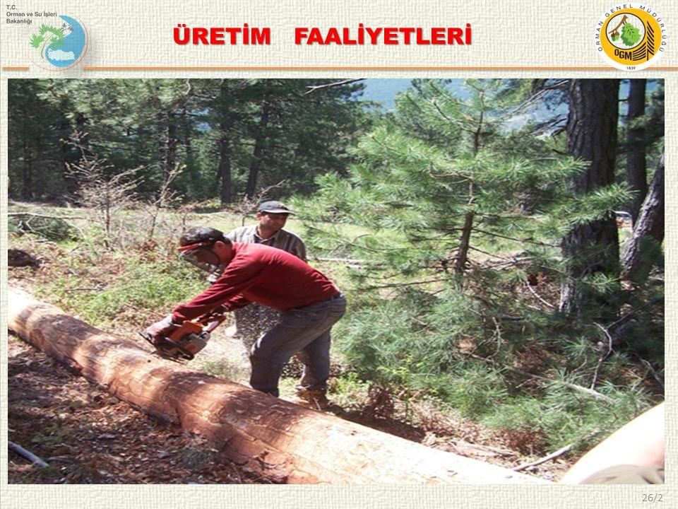 ÜRETİM FAALİYETLERİ