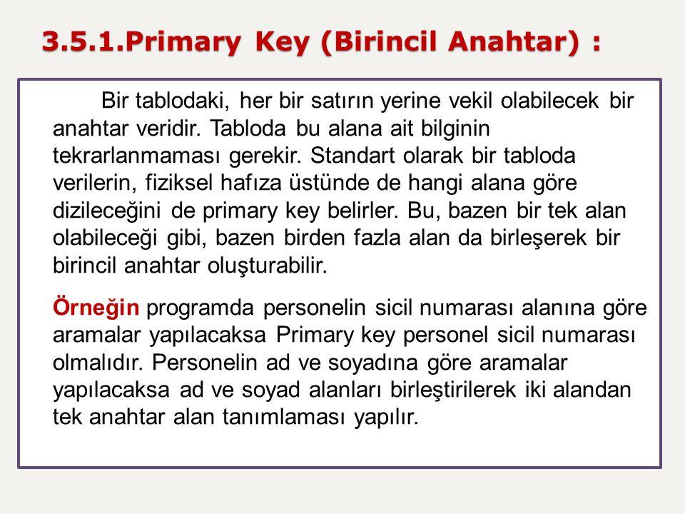 3.5.1.Primary Key (Birincil Anahtar) :