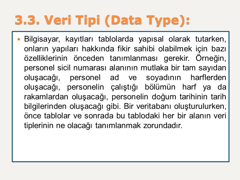 3.3. Veri Tipi (Data Type):