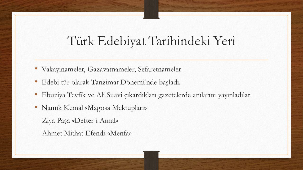 Türk Edebiyat Tarihindeki Yeri