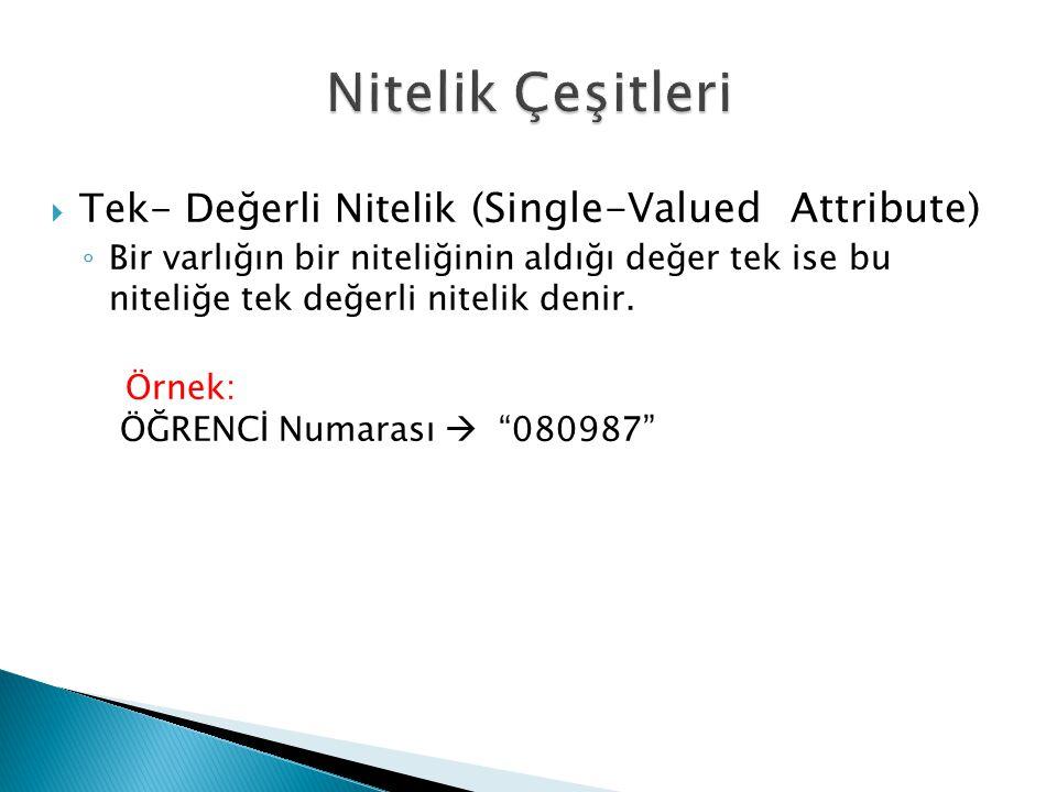 Nitelik Çeşitleri Tek- Değerli Nitelik (Single-Valued Attribute)