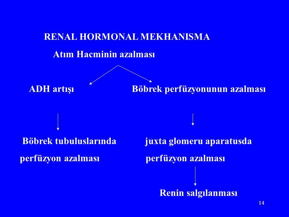 RENAL HORMONAL MEKHANISMA