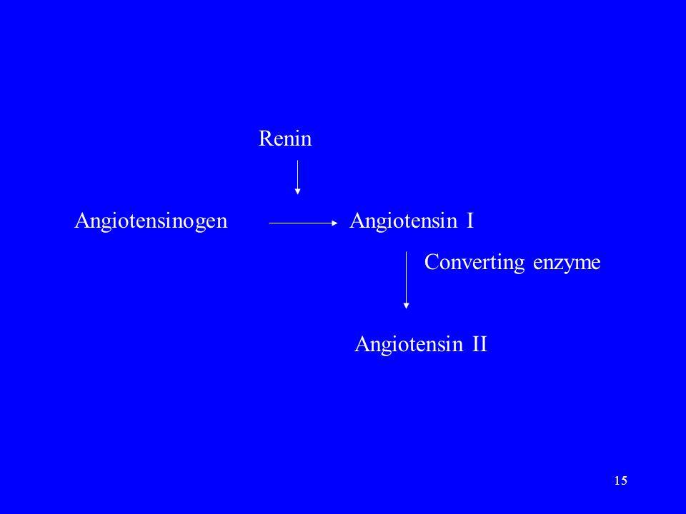 Renin Angiotensinogen Angiotensin I Converting enzyme Angiotensin II