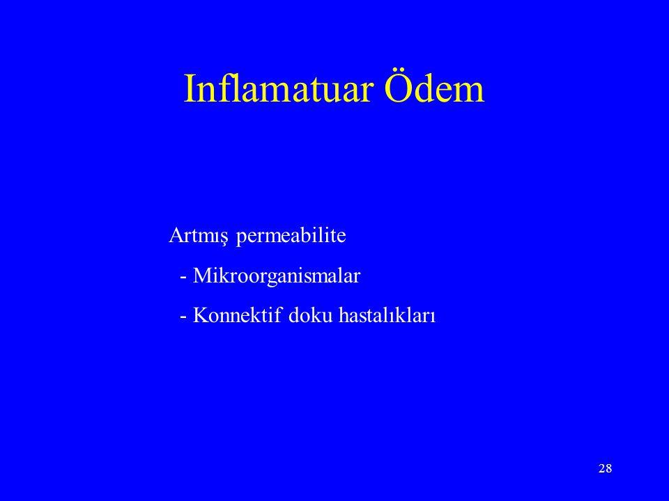 Inflamatuar Ödem Artmış permeabilite - Mikroorganismalar