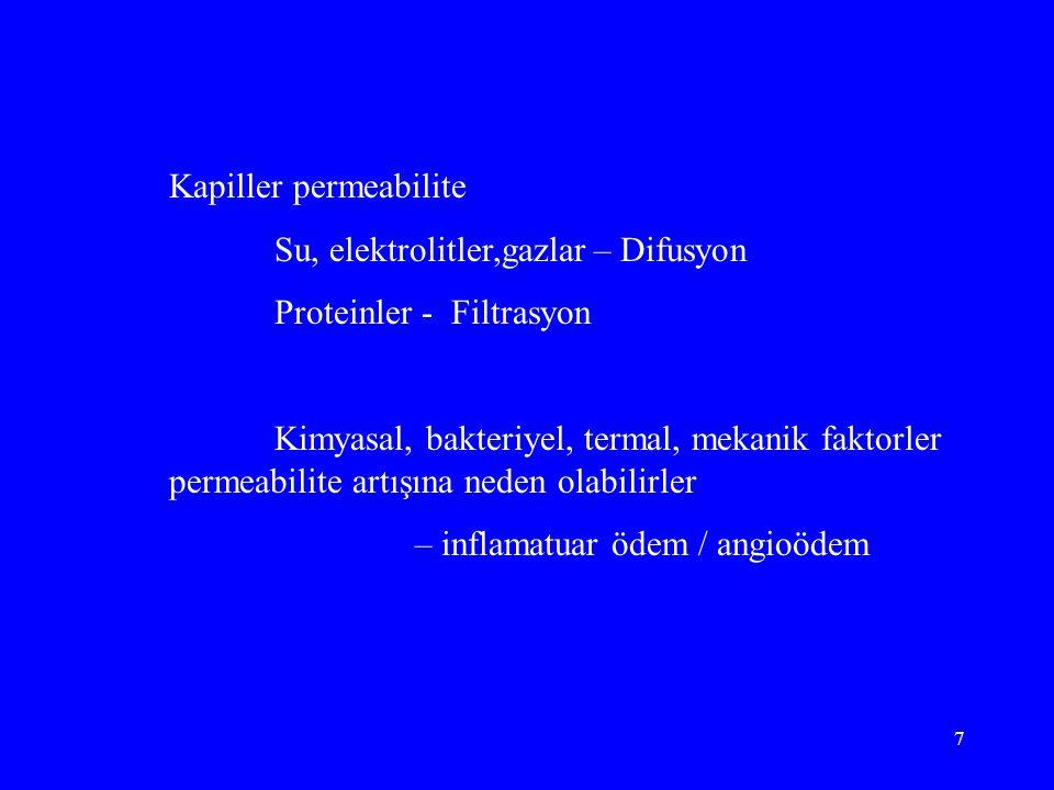 Kapiller permeabilite