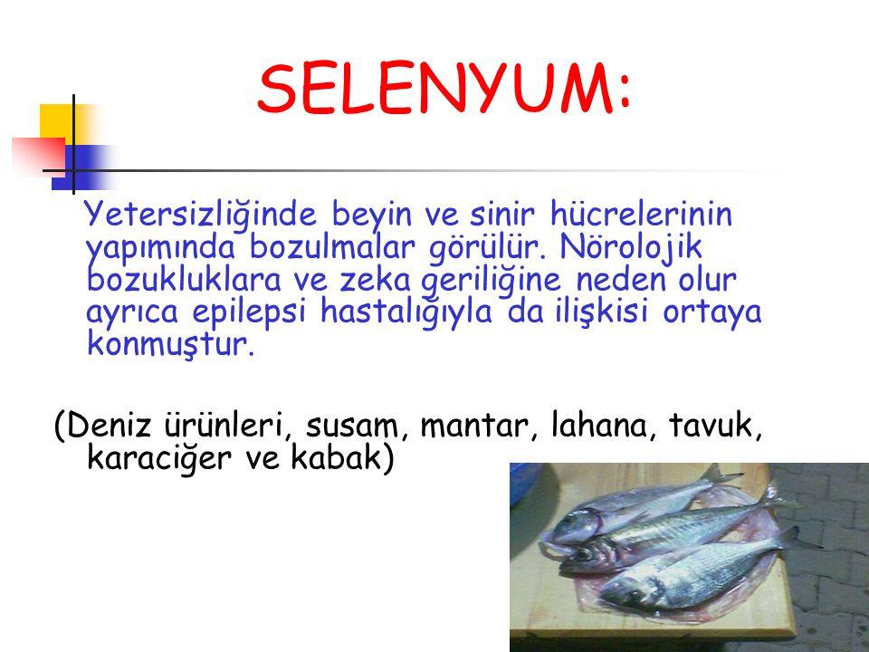 SELENYUM: