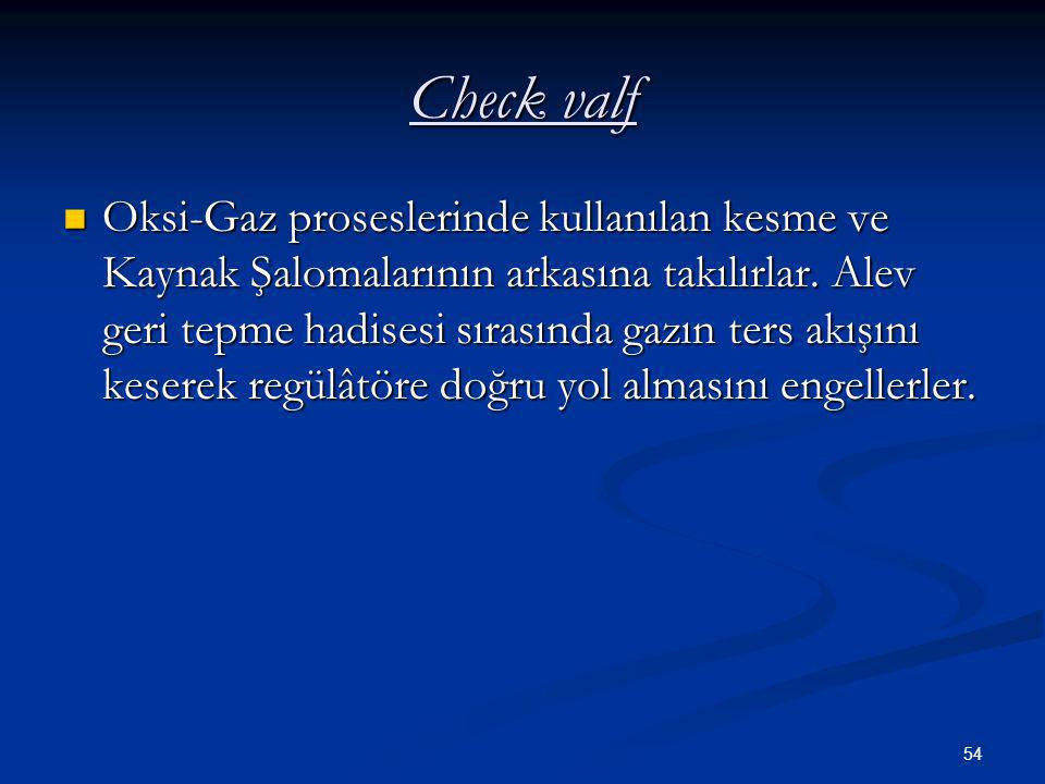 Check valf