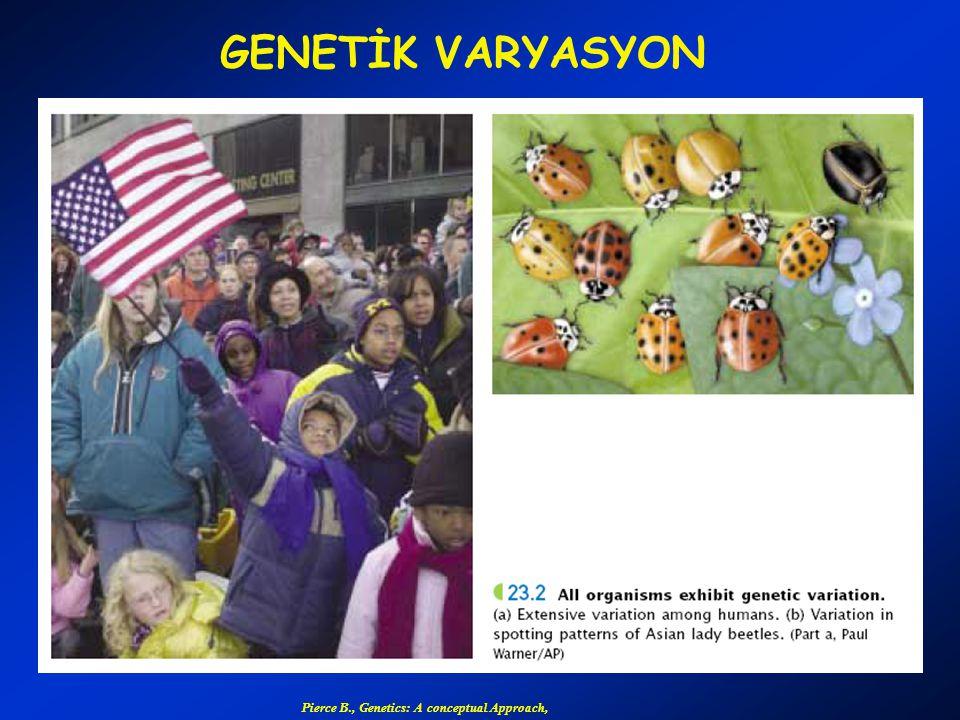 GENETİK VARYASYON Pierce B., Genetics: A conceptual Approach,