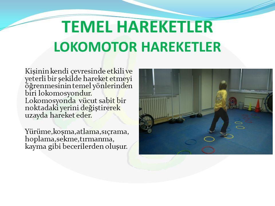 TEMEL HAREKETLER LOKOMOTOR HAREKETLER