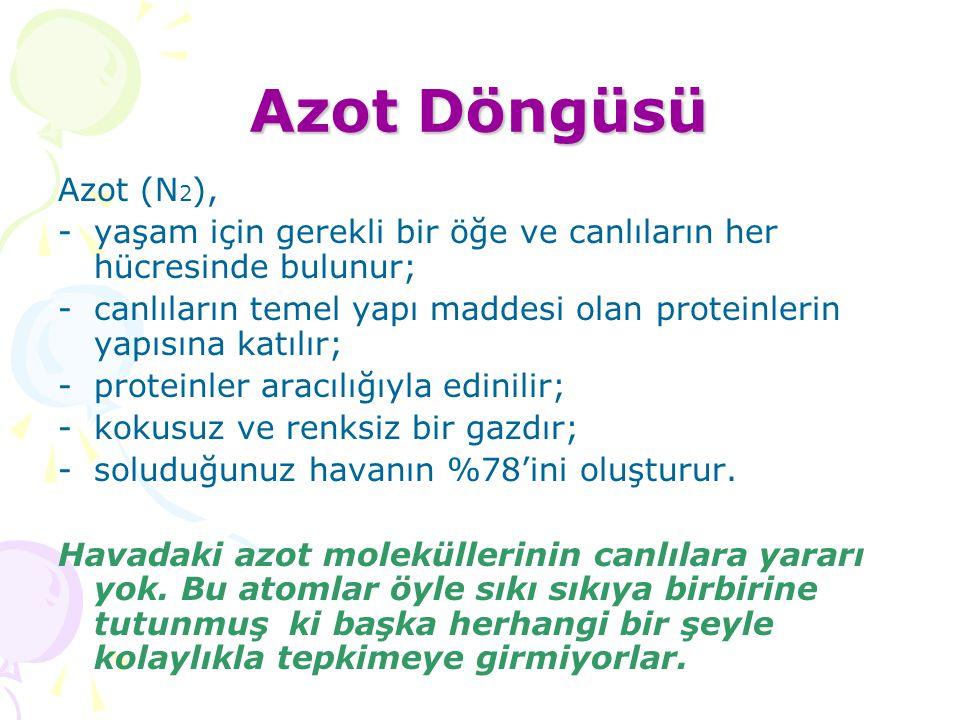 Azot Döngüsü Azot (N2), yaşam için gerekli bir öğe ve canlıların her hücresinde bulunur;