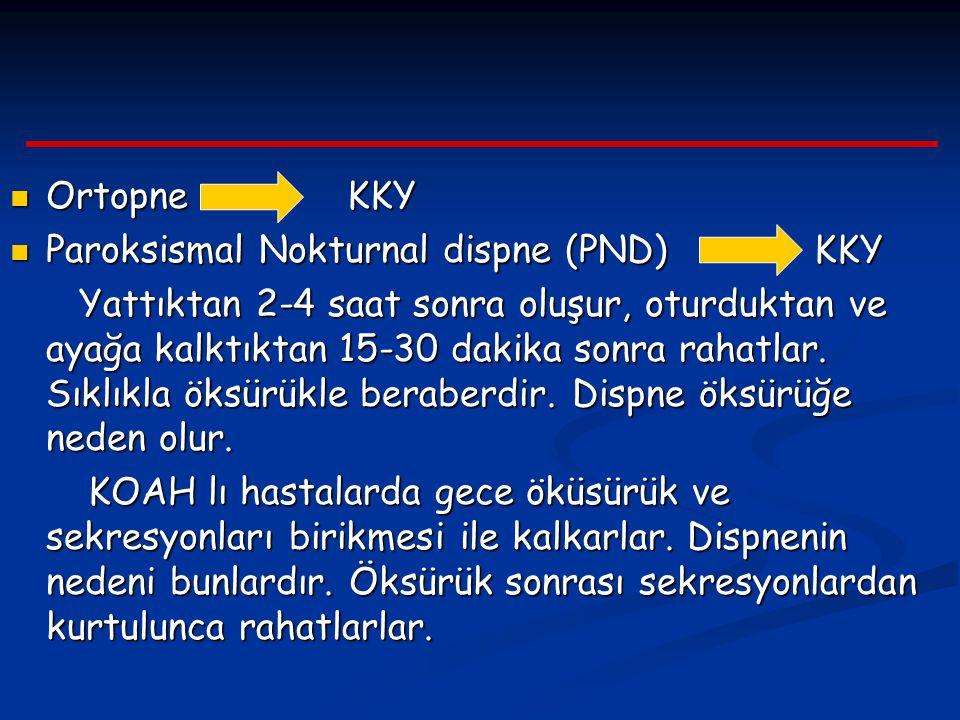 Ortopne KKY Paroksismal Nokturnal dispne (PND) KKY.