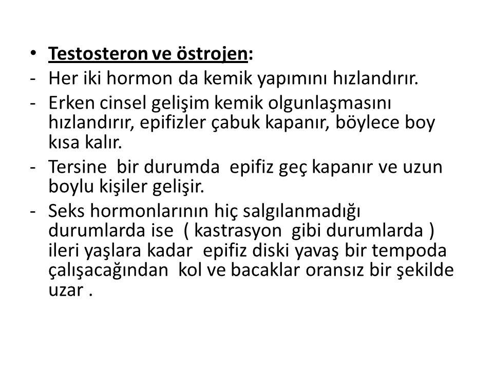 Testosteron ve östrojen: