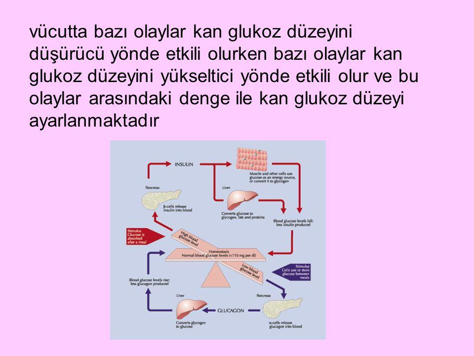 vücutta bazı olaylar kan glukoz düzeyini düşürücü yönde etkili olurken bazı olaylar kan glukoz düzeyini yükseltici yönde etkili olur ve bu olaylar arasındaki denge ile kan glukoz düzeyi ayarlanmaktadır