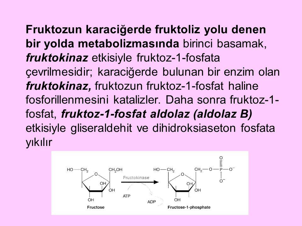 Fruktozun karaciğerde fruktoliz yolu denen bir yolda metabolizmasında birinci basamak, fruktokinaz etkisiyle fruktoz-1-fosfata çevrilmesidir; karaciğerde bulunan bir enzim olan fruktokinaz, fruktozun fruktoz-1-fosfat haline fosforillenmesini katalizler.