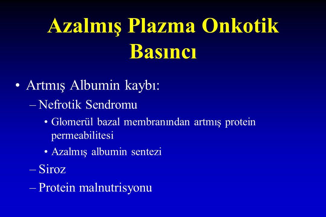 Azalmış Plazma Onkotik Basıncı