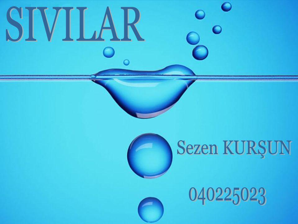 SIVILAR Sezen KURŞUN 040225023