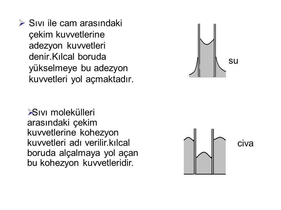 Sıvı ile cam arasındaki çekim kuvvetlerine adezyon kuvvetleri denir