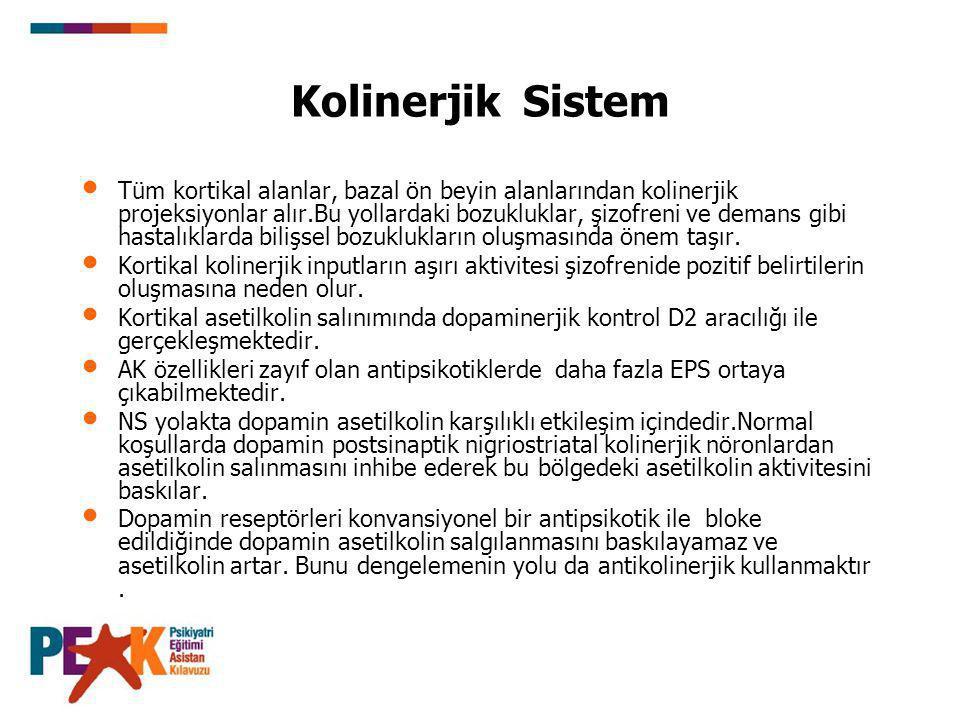 Kolinerjik Sistem