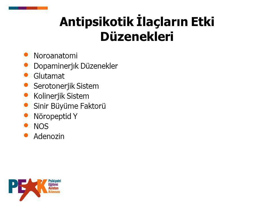 Antipsikotik İlaçların Etki Düzenekleri
