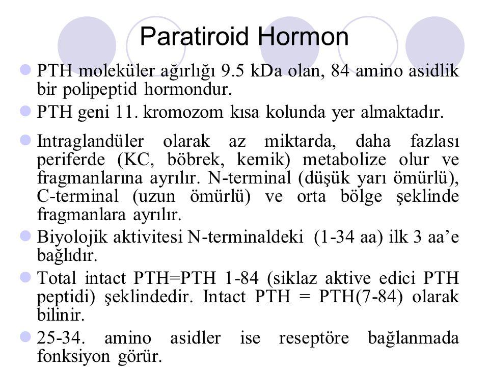 Paratiroid Hormon PTH moleküler ağırlığı 9.5 kDa olan, 84 amino asidlik bir polipeptid hormondur. PTH geni 11. kromozom kısa kolunda yer almaktadır.