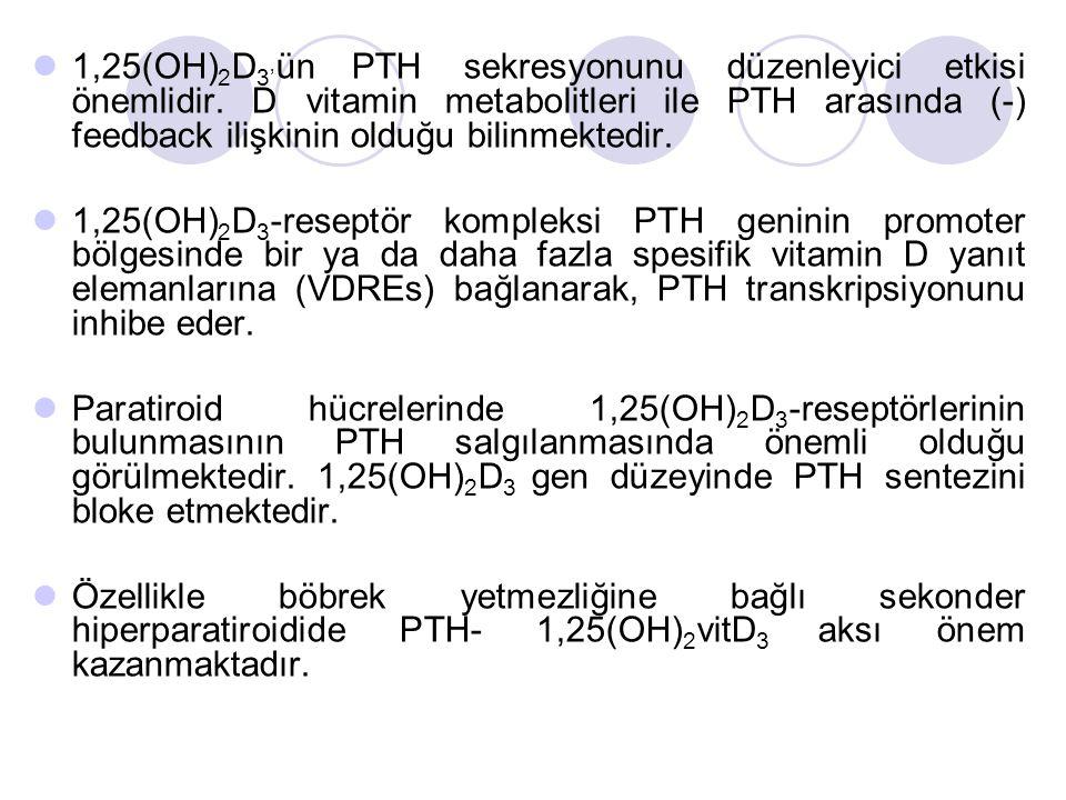 1,25(OH)2D3'ün PTH sekresyonunu düzenleyici etkisi önemlidir