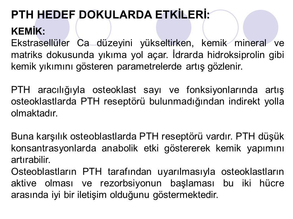 PTH HEDEF DOKULARDA ETKİLERİ: