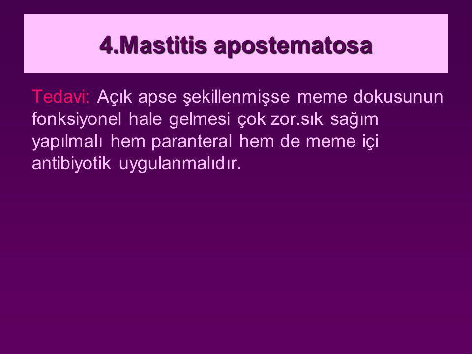 4.Mastitis apostematosa