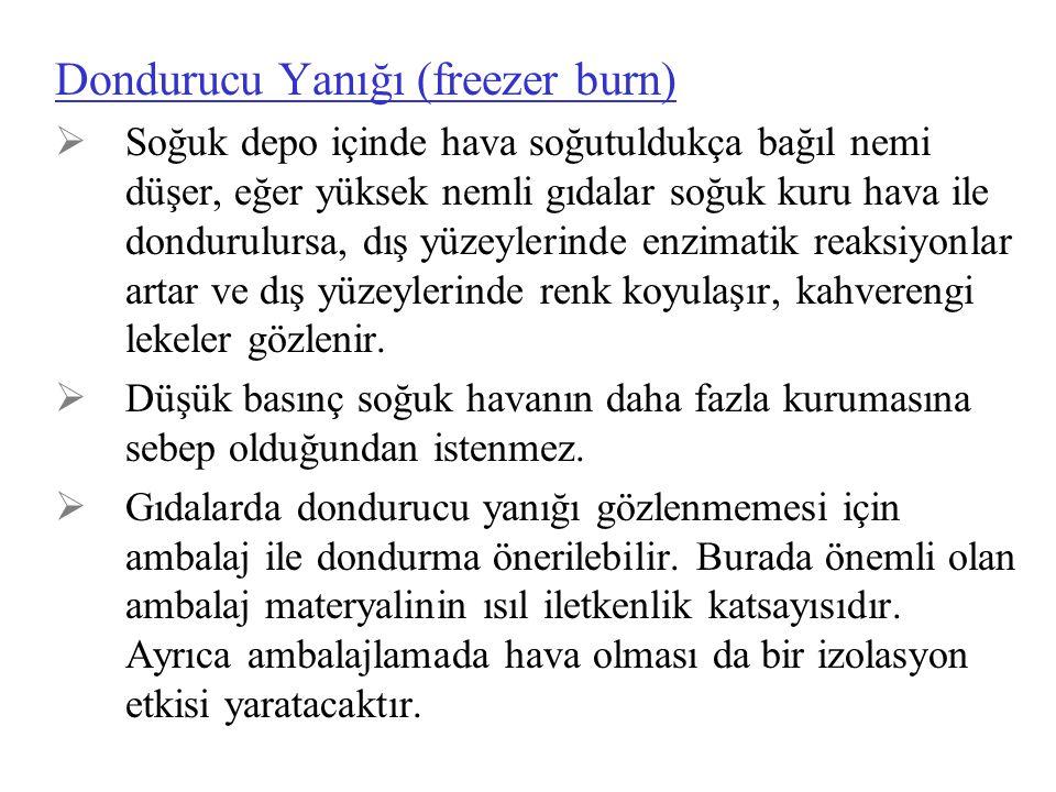 Dondurucu Yanığı (freezer burn)