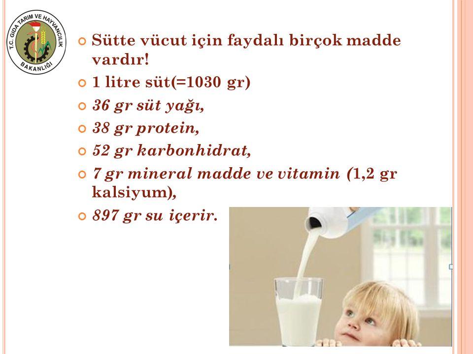 Sütte vücut için faydalı birçok madde vardır!