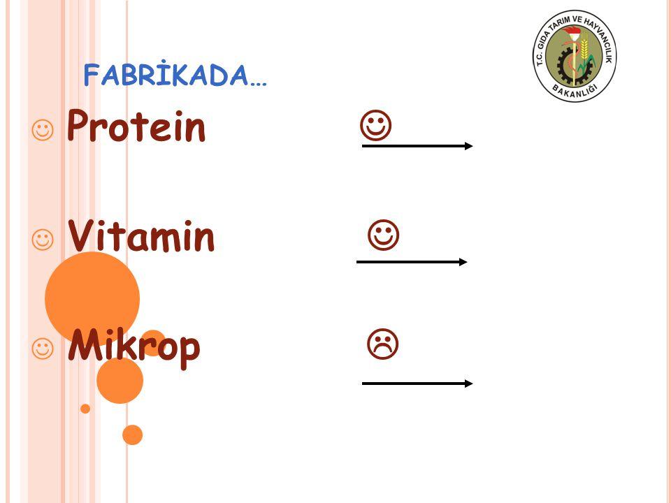 Protein  Vitamin  Mikrop 