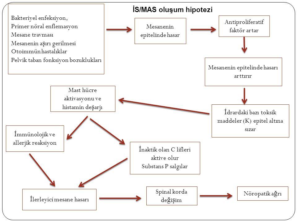Bakteriyel enfeksiyon, Primer nöral enflemasyon Mesane travması