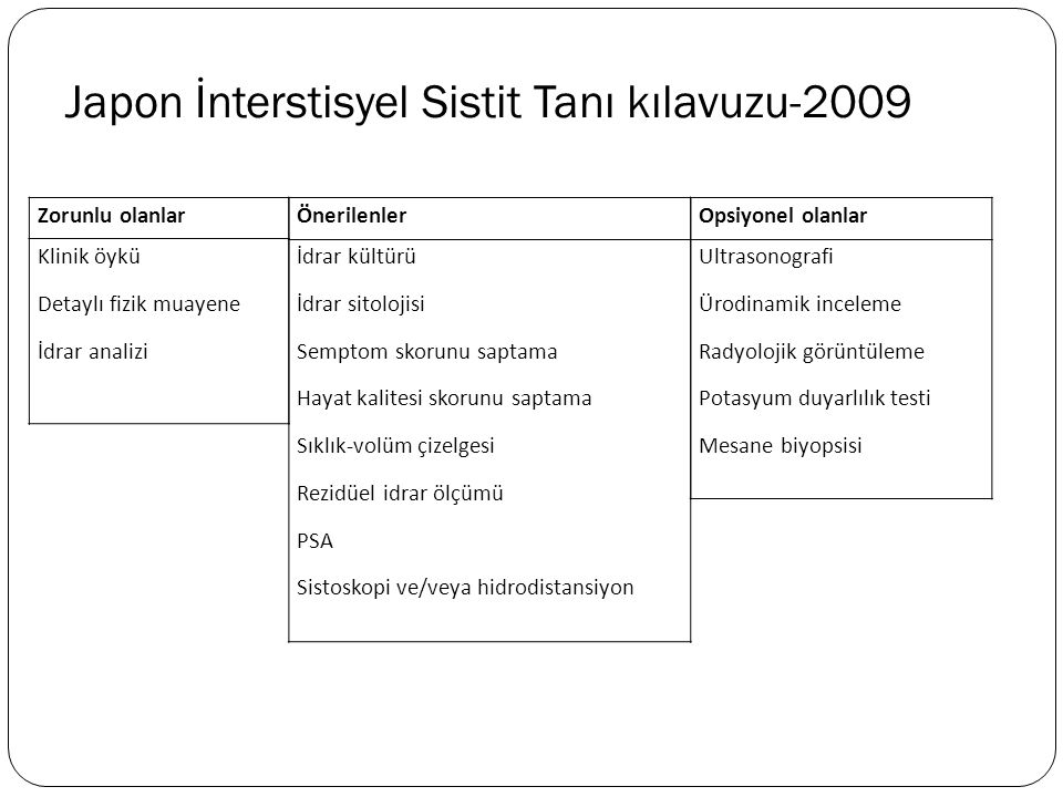 Japon İnterstisyel Sistit Tanı kılavuzu-2009
